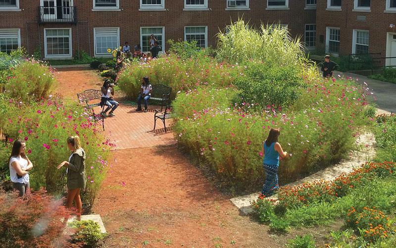 Audrey Stout Learning Garden