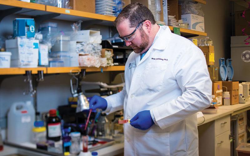 Dr. Brian Grimberg in his lab