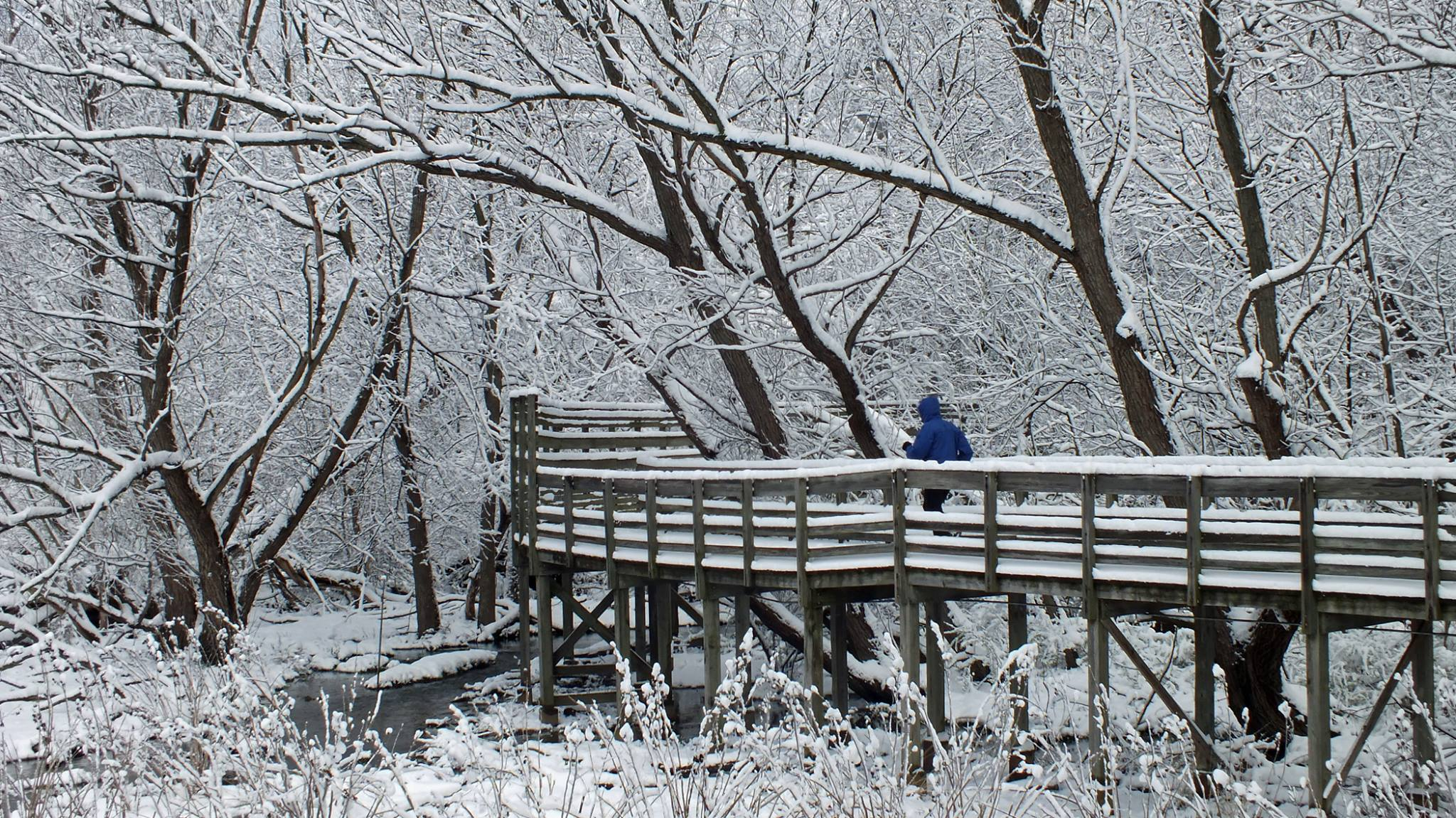 Winter Blues by Gretchen Gaede, First Place, Parks and Public Spaces