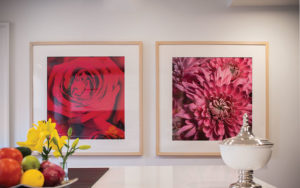 Flower photographs by Cleveland's Barney Taxel.