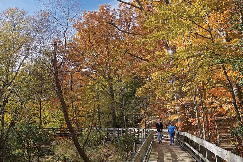 Two people walking on the All People's Trail surrounded by fall trees