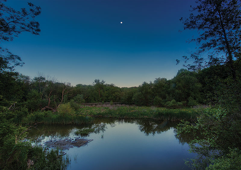 The marsh at the Nature Center at Shaker Lakes in moonlight