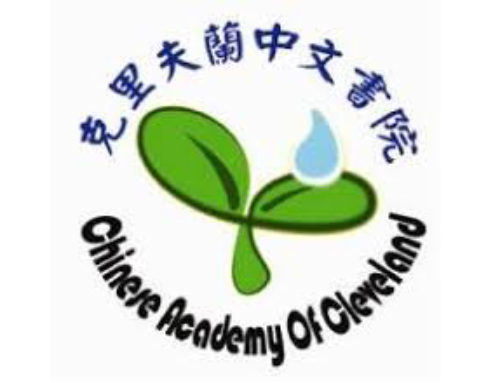 The Chinese Academy