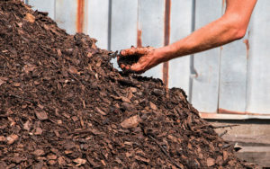 Hand in compost